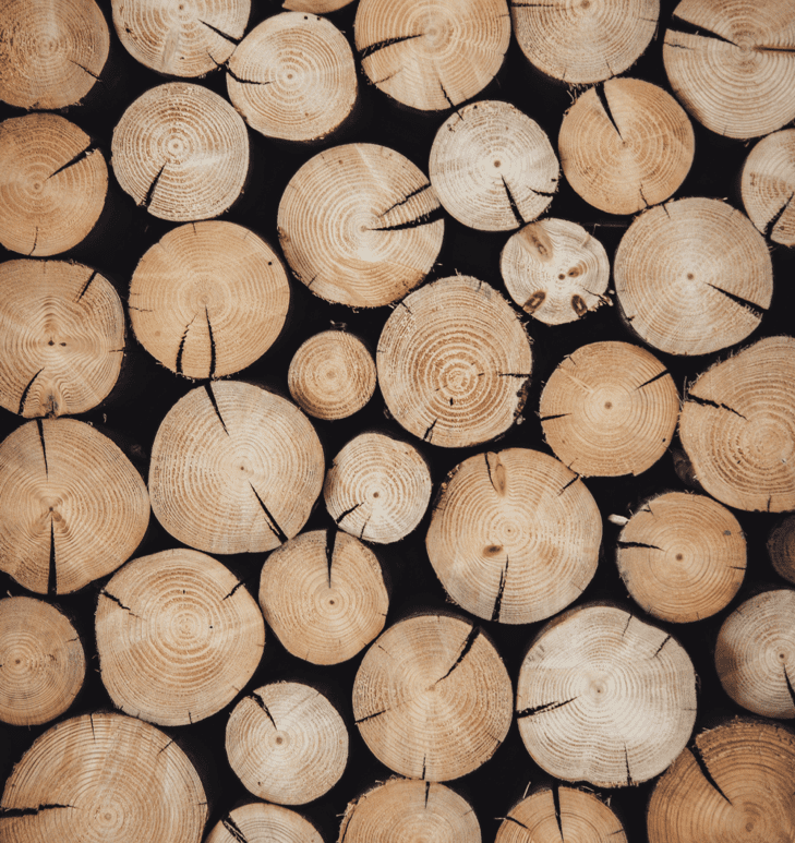 Discover the professions related to Wood